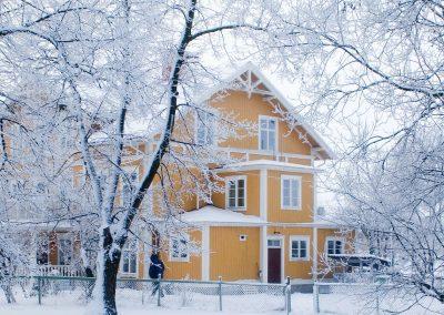 skave_vinter